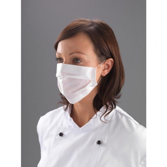 2 ply Disposable Face Mask x 100